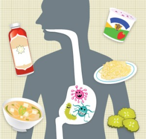 probiotic_illustration_350